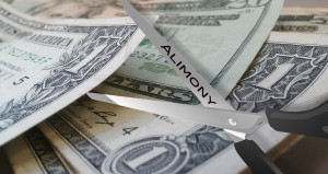 Alimony Scissors - cutting money